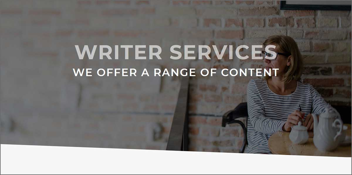 A website for a professional writer